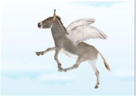 asini volanti l italiano con le espressioni degli animali adgblog