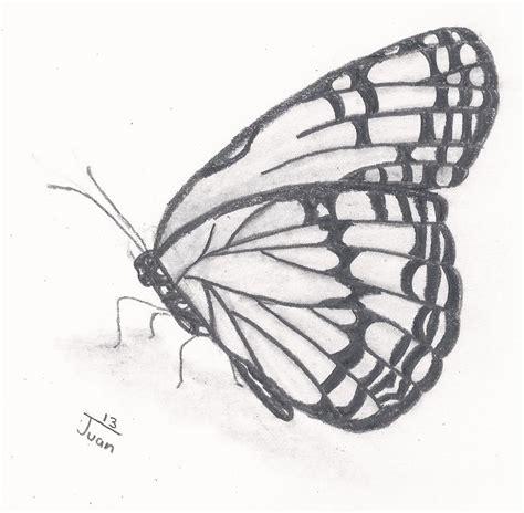 imagenes de mariposas monarcas para colorear dibujo de la mariposa monarca imagui