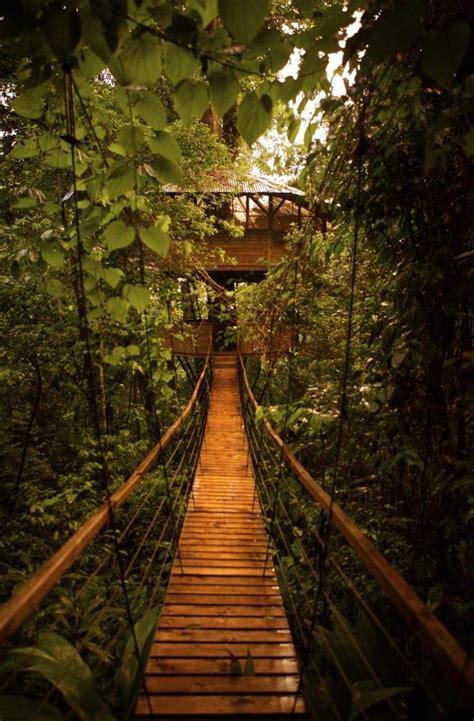 treehouse community up the ante anthology treehouse utopia