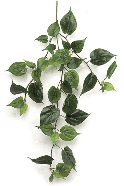 indoor vine plant shopfoliage com artificial indoor hanging vines p 315