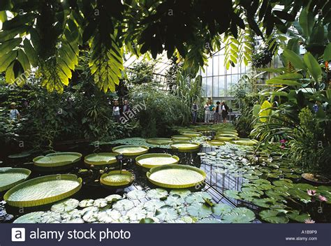 royal botanic garden edinburgh scotland