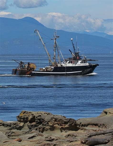 used ocean fishing boats bc a gillnetter just off nanaimo bc gillnetting is a common