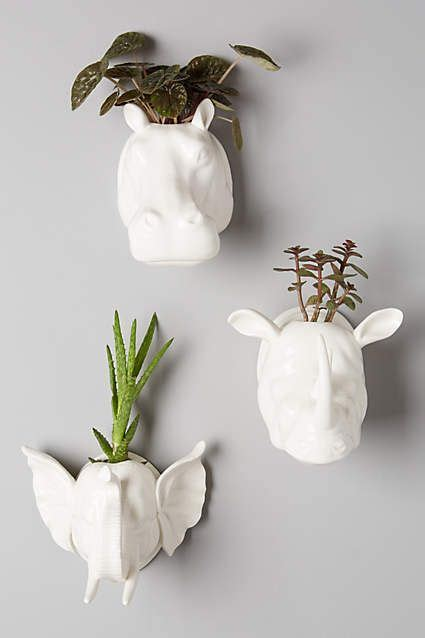 elephant wall planter 15 best images about on safari trophy heads on pinterest