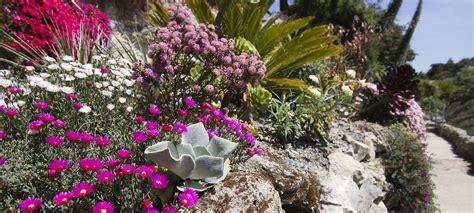 ventnor botanic gardens garden isle visitisleofwight co uk