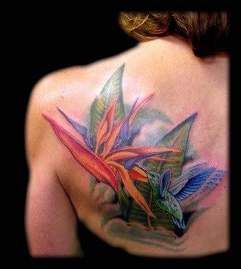 bird of paradise flower tattoo designs aaron goolsby tattoos nature hummingbird and bird of