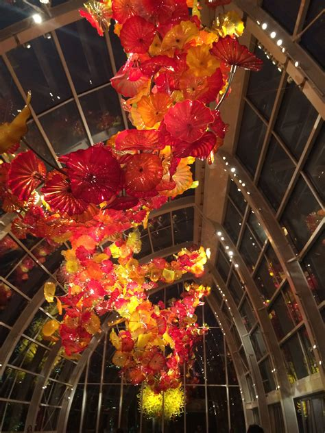 Ceiling Chihuly by Chihuly Garden And Glass May 28 2016 S