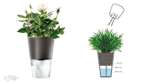 self watering plant pots self watering flowerpot eva solo accessories better