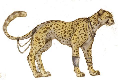 Boneka Kucing Cat 3 Colour Big Eye 9 animalia desenhos selvagens 5 especial