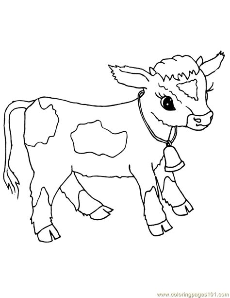 free coloring pages of calf