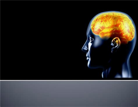 powerpoint templates brain brain powerpoint template