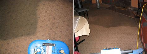 Area Rugs St Catharines About Us Garec S Cleaning Systems
