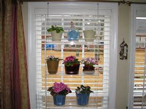 Hanging Window Plant Shelf by Hanging Window Plant Shelves Using Blinds