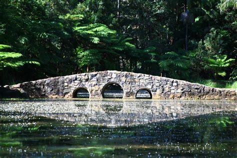 tamborine mountain botanic gardens tamborine mountain botanic gardens