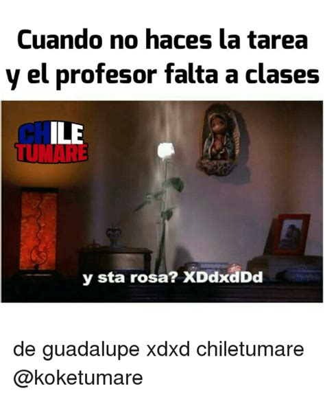 Rosa De Guadalupe Meme - 25 best memes about guadalupe guadalupe memes