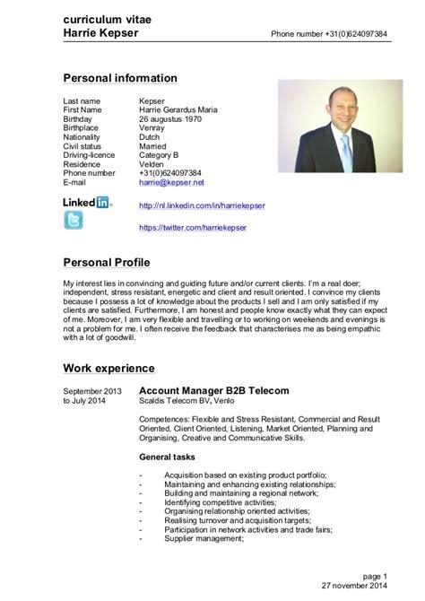 Curriculum Vitae Engels Template Cv Engels