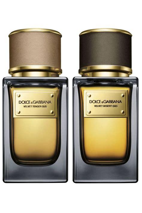 Parfum Dolce Dan Gabbana best 25 dolce and gabbana perfume ideas on