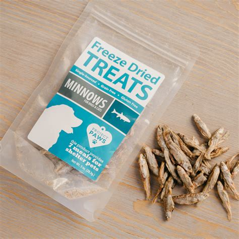 freeze dried treats single ingredient minnows freeze dried treats iheartdogs