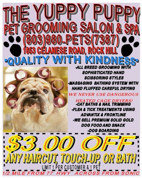 yuppy puppy pet spa pictures for the yuppy puppy pet spa boarding in rock hill sc 29732