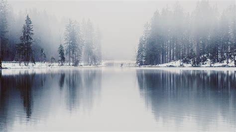 nk winter lake white blue wood nature fog wallpaper