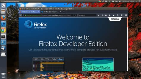install google web designer in ubuntu linux mint other how to install firefox developer edition on ubuntu 16 04