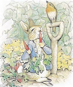 Cute Bedding Revenge Of Peter Rabbit Or The Bunny Boom That 191 S Split