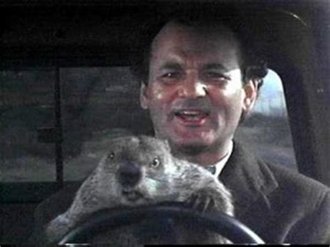 groundhog day philosophy groundhog day comedy meets philosophy muse of odin