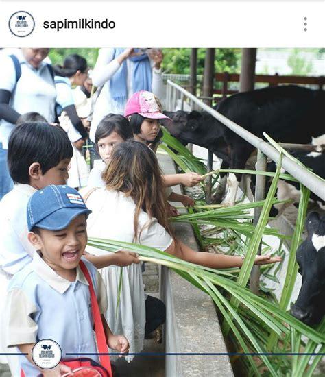Tempat Anak Panaharrow Quiver Release tempat liburan anak 2017 di jawa timur parent stories