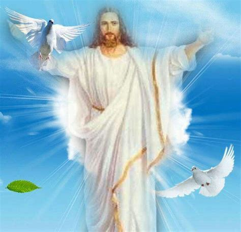 image of christ 427 best jesus christ my saviour images on pinterest