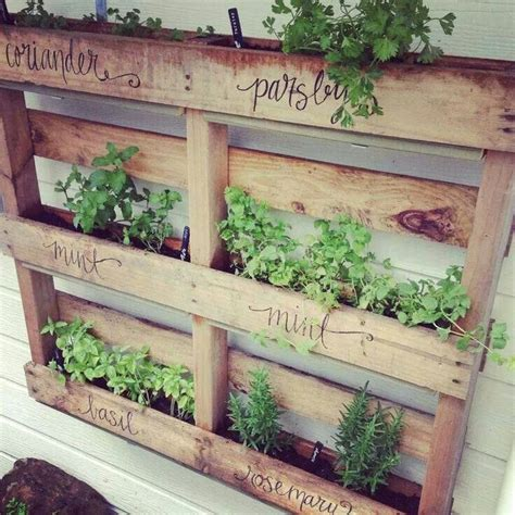 herbs planter herb planter made from a recycled pallet sustainability pinterest herb planters herbs and
