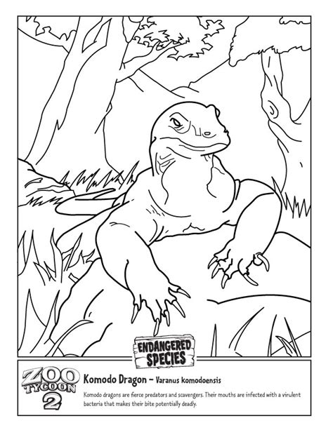 Coloring Pages Of Komodo Dragon | free coloring pages of komodo dragon