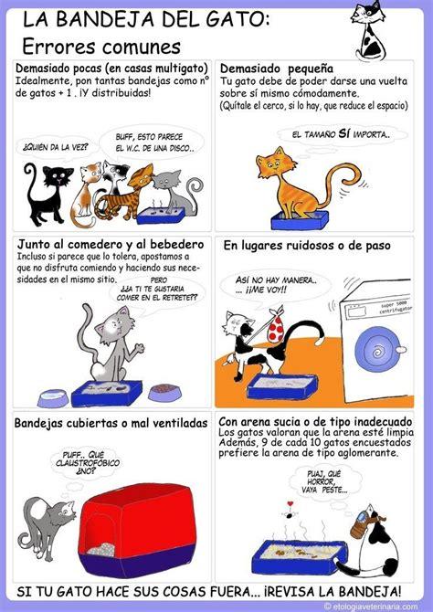 los amantes de todos b007fsxp02 12 infogr 225 ficos pr 225 cticos que todo amante de los gatos necesita amantes de los gatos el gato
