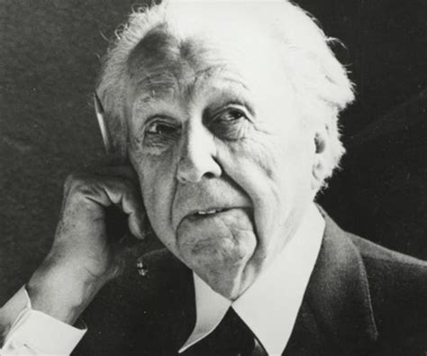 frank lloyd wright biography and interior design projects
