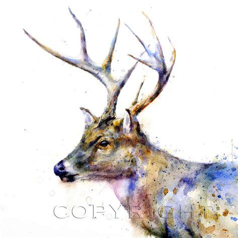 watercolor deer tutorial image gallery watercolor deer