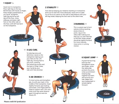 tr rebound your way to fitness with the pt bouncer