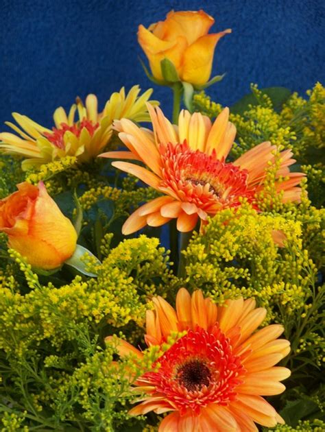 fiori di italia lavoro dal kenya all italia l incredibile viaggio