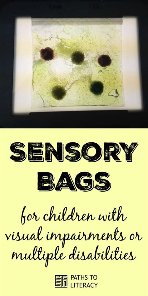 light in the box bags sensory bags paths to literacy