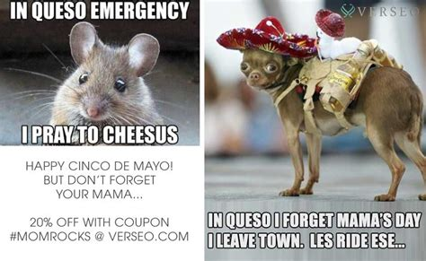 5 De Mayo Memes - happy cinco but do not forget your mama verseo