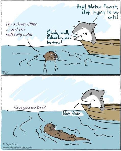 spongebob boat dog bed quot oh dakuwaqa quot the shark comics and cartoons water