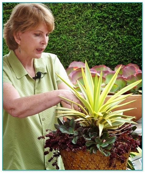 succulent container gardens debra baldwin battery operated submersible
