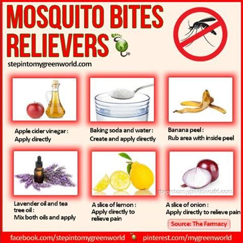 best 25 mosquito bite remedies ideas on