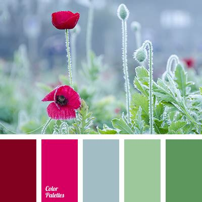 red and green color combination wine color palette ideas