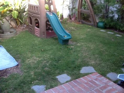 the backyard boys quot sloped backyard in need of playground for two small boys
