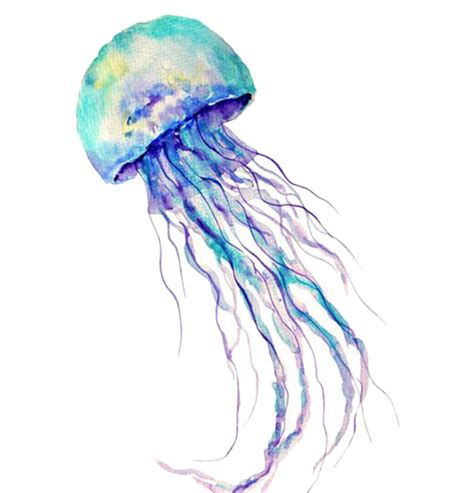 watercolor tattoos temporary watercolor jellyfish temporary tattoos for