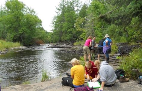 Michigan Mba Environmental Science by Mtu Conservation Forestry Programs Ranked High In New