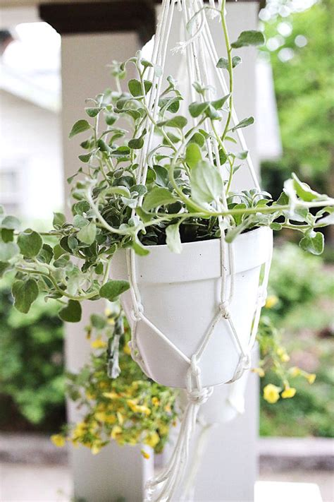 diy hanging planter decoist