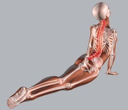 dormire con cuscino tra le gambe hernia de disco l5 s1 como curar una hernia de disco