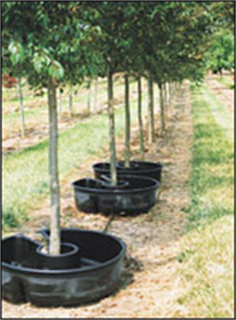 fruit tree watering system easy watering systems