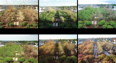 Landscape Architecture Ksu Seaton Green Roof Research Demonstration Projects