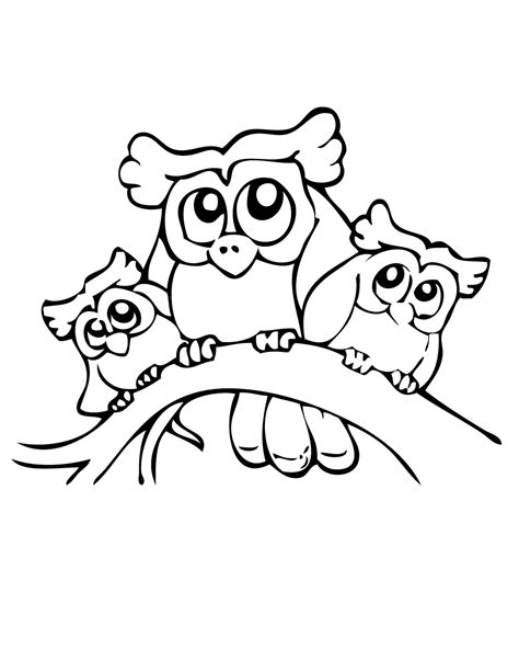 baby owl printable coloring pages coloring pages