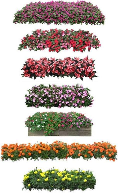 flower design elevation trees photoshop architectural graphic sketch